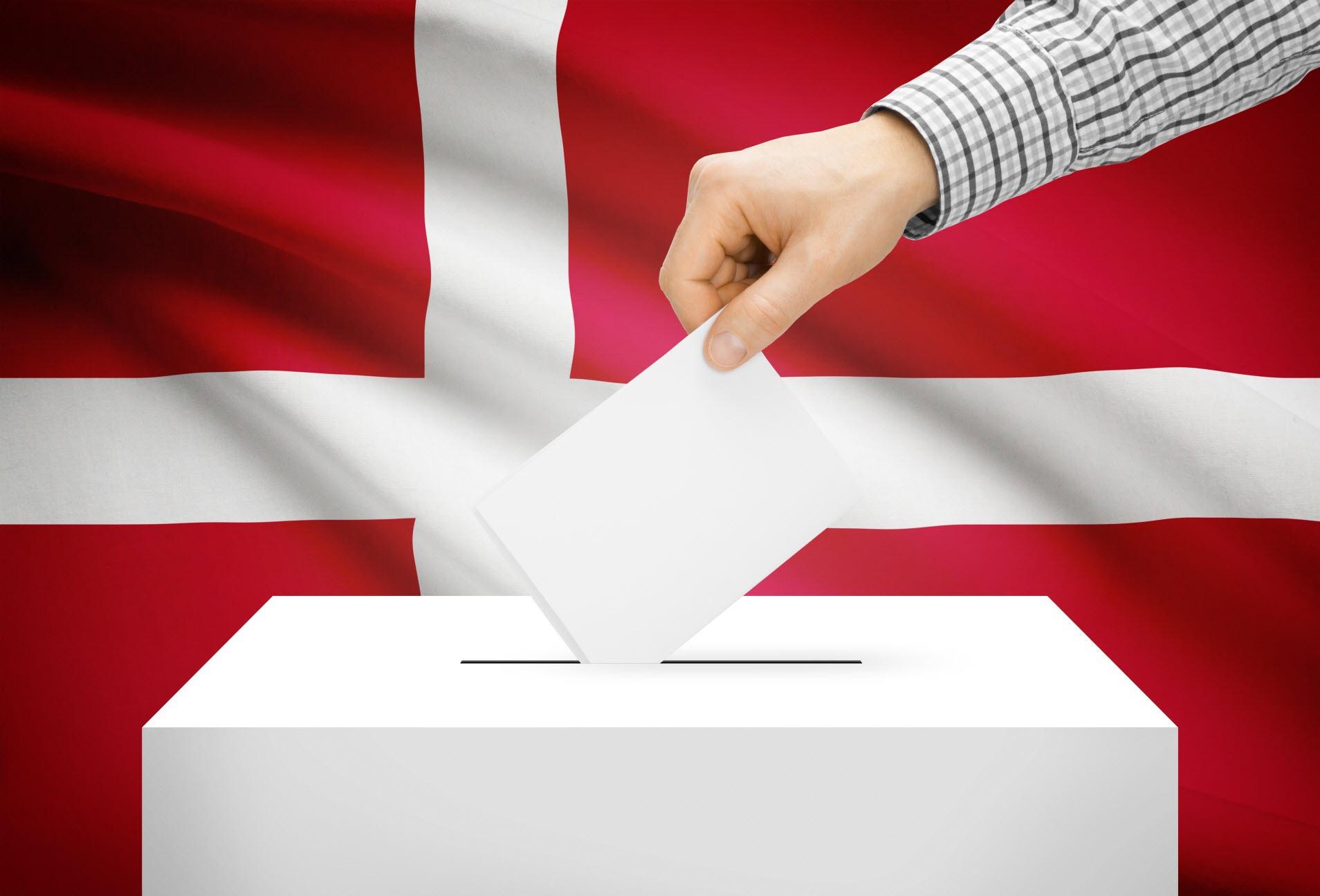 Danske stemme politk